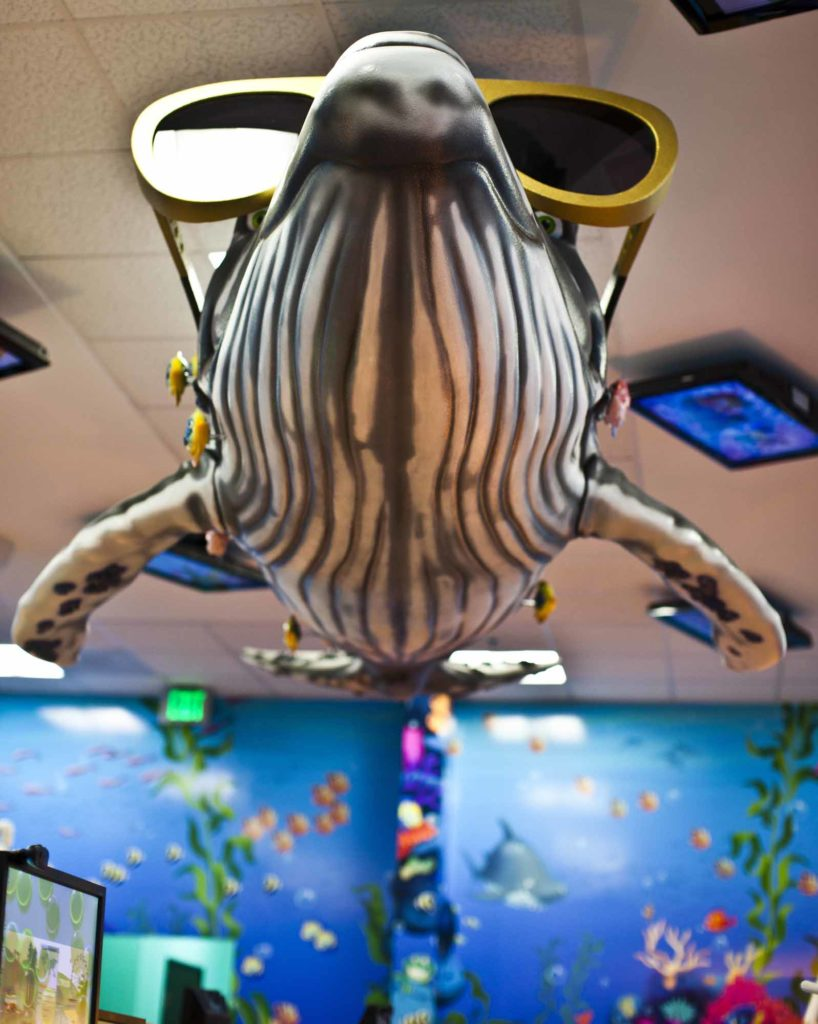 office tour of Smiling Seal Pediatric Dentistry below Whalevis